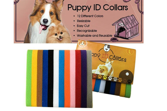 Pet Puppy Kitten 12 Colours Whelping ID Collar Bands Identification Collar Tags